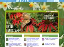Timber Press  website design