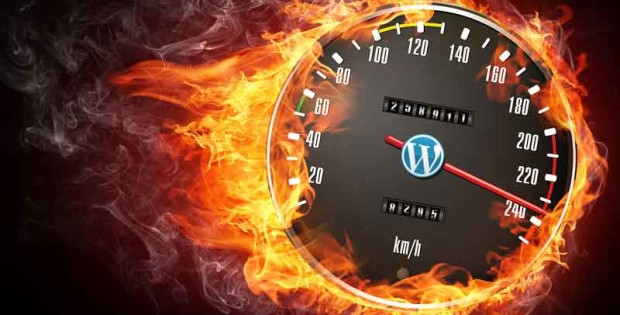 wordpress theme page speed
