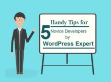 Tips for WordPress Developer